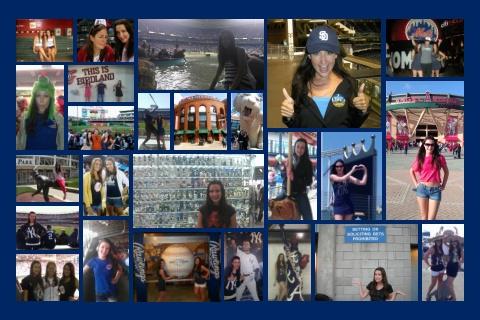 Ballpark Collage